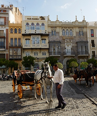 201408-w-seville-carriage