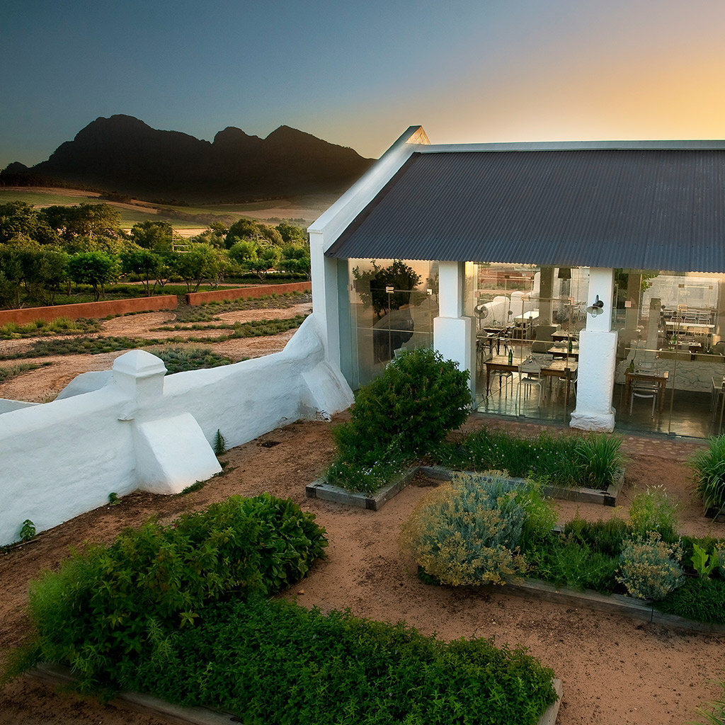 Where to Eat in the Winelands