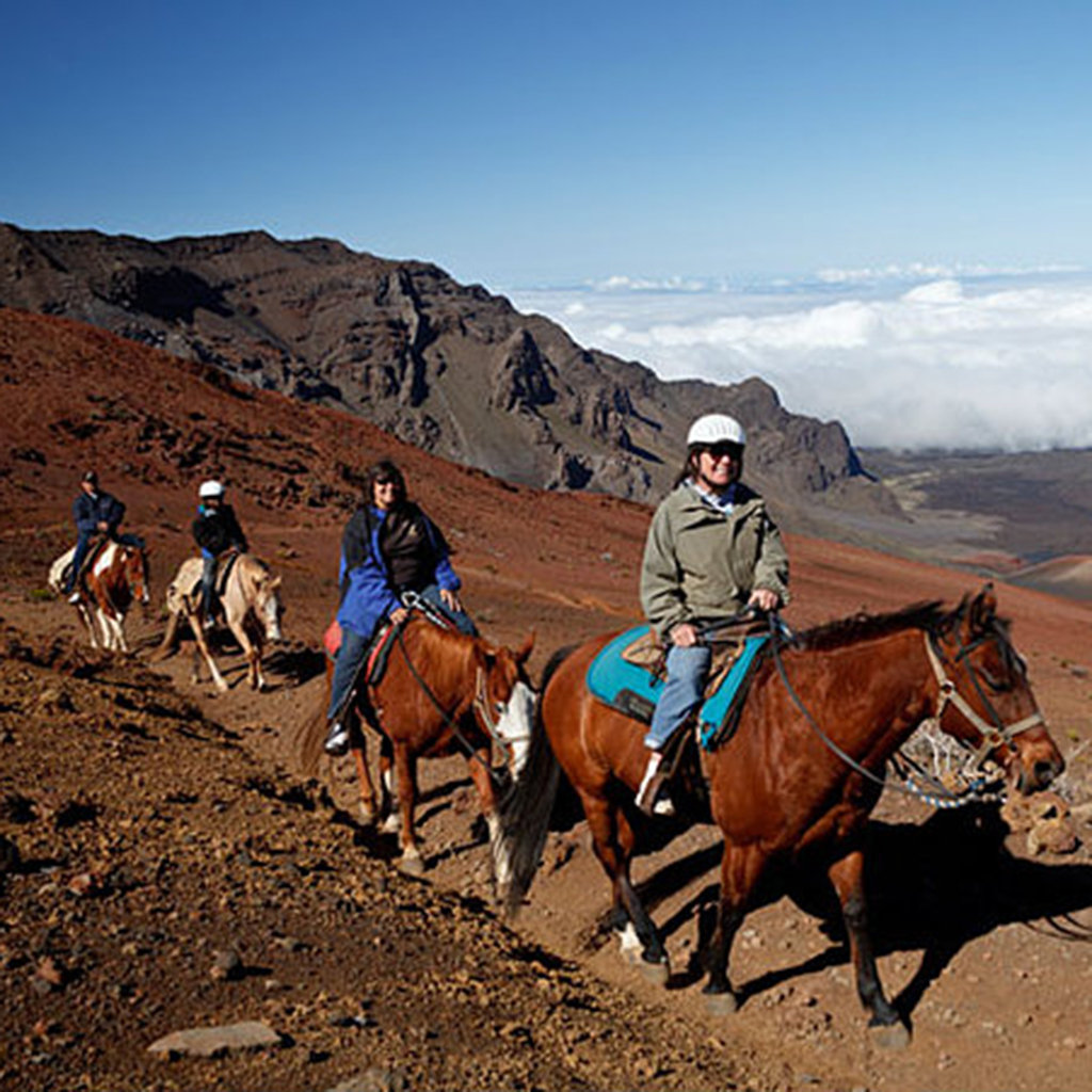 Where to Go Horseback Riding on Maui