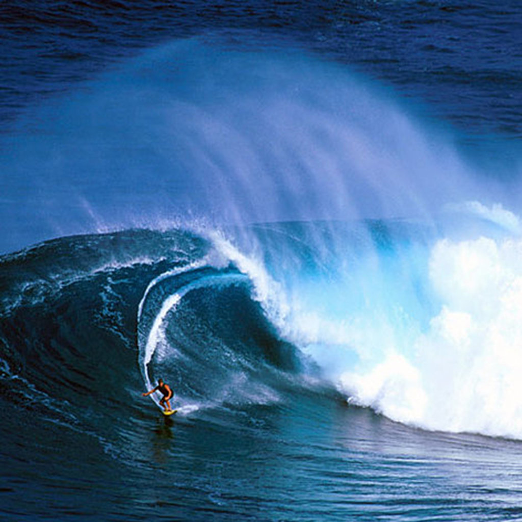 Where to Watch Big Wave Surfing on Maui