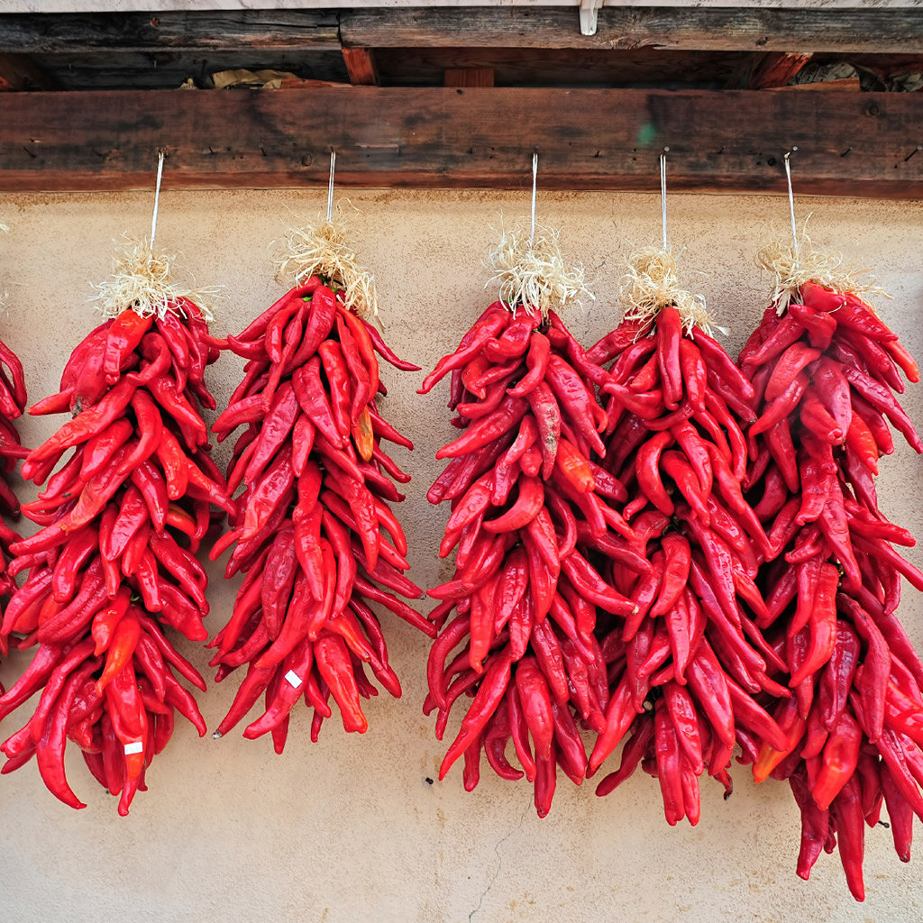 Best Red Chile in Santa Fe