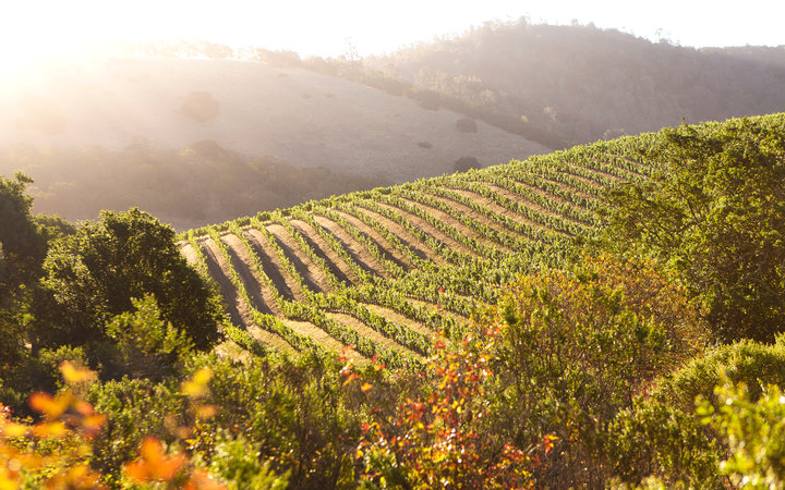 Perfect 3-Day Weekend in Napa