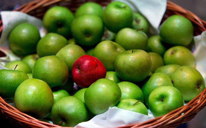 Our Bodies Are Wired to Choose Red Foods over Green