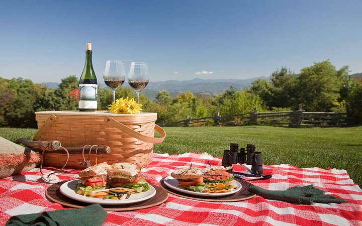 Picnic food on plates on red check blanket in rural setting, Smoky Mountains, North Carolina, USA. (Photo by: Jumping Rocks/UIG via Getty Images)