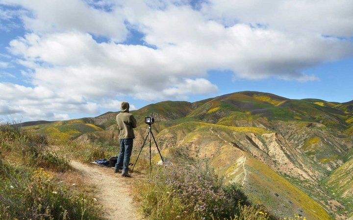 Photographers wait for the perfect light to shoot the wildflower covered hills of the Tremblor Range in Carrizo Plain National Monument near Taft, California during a wildflower  super bloom,  April 12, 2017.