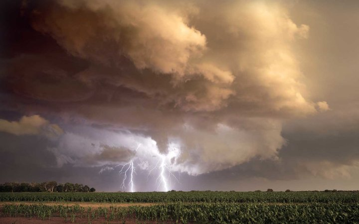 Lightning strikes near corn field