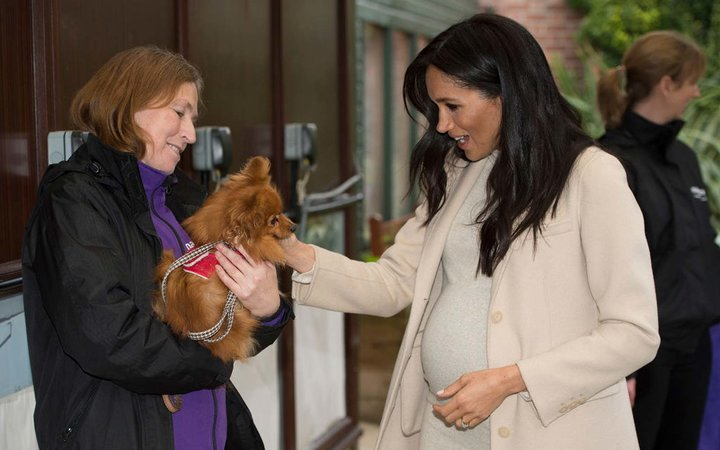 Meghan, the Duchess of Sussex meets  Foxy  during her visit to the Mayhew, an animal welfare charity