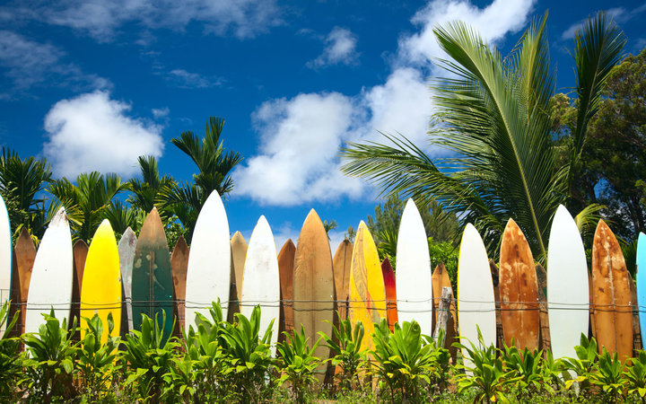 Surfboards, Maui, Hawaii