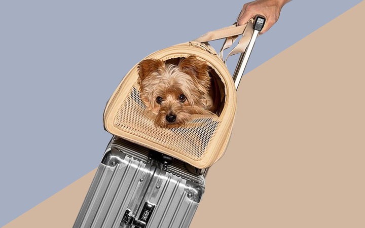 Airline Compliant Dog Carrier Wild One Tout