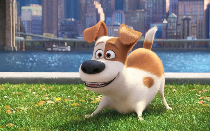Secret Life of Pets film still