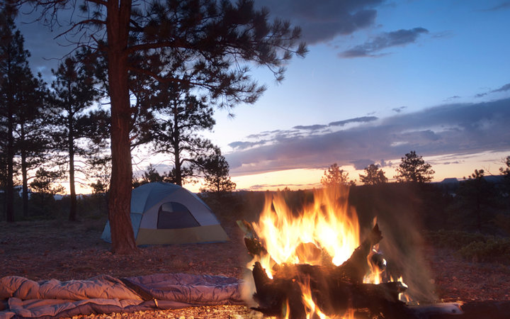 Where to Camp in Jackson Hole