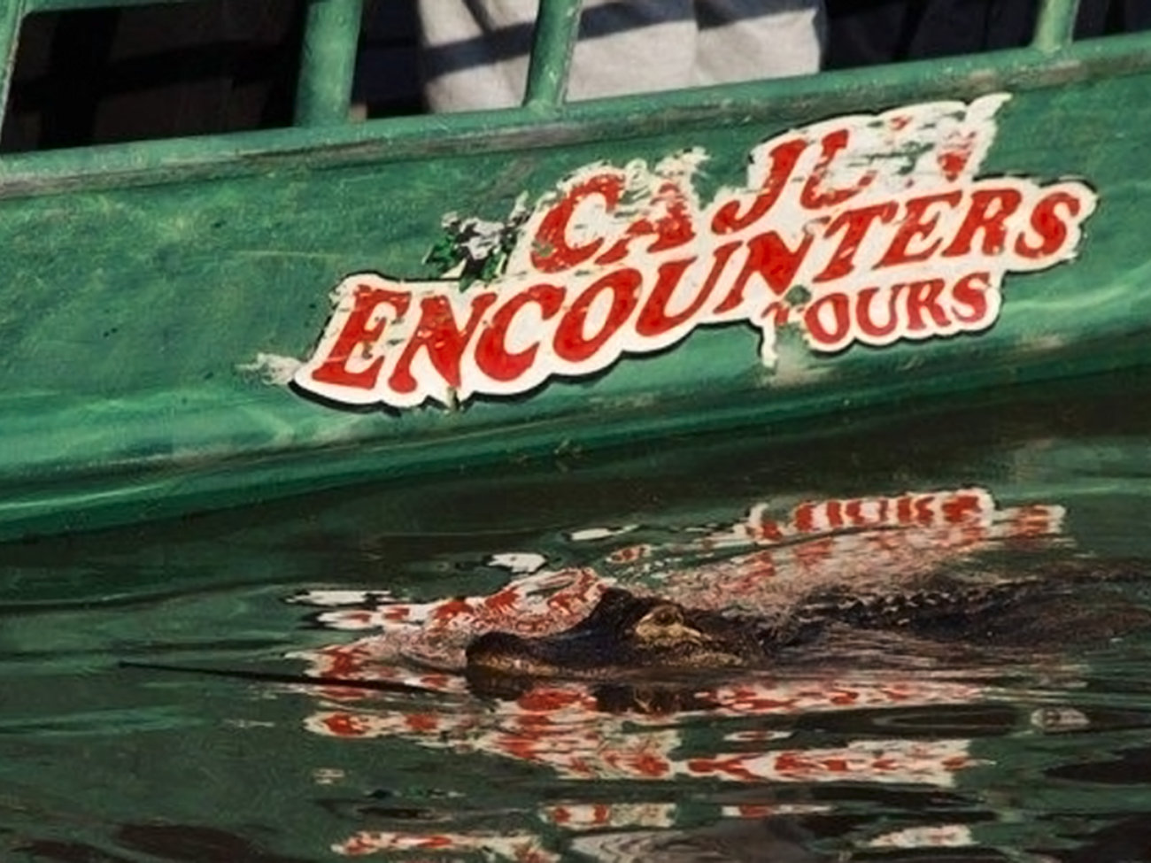 Cajun Encounters Honey Island Swamp Tour in New Orleans