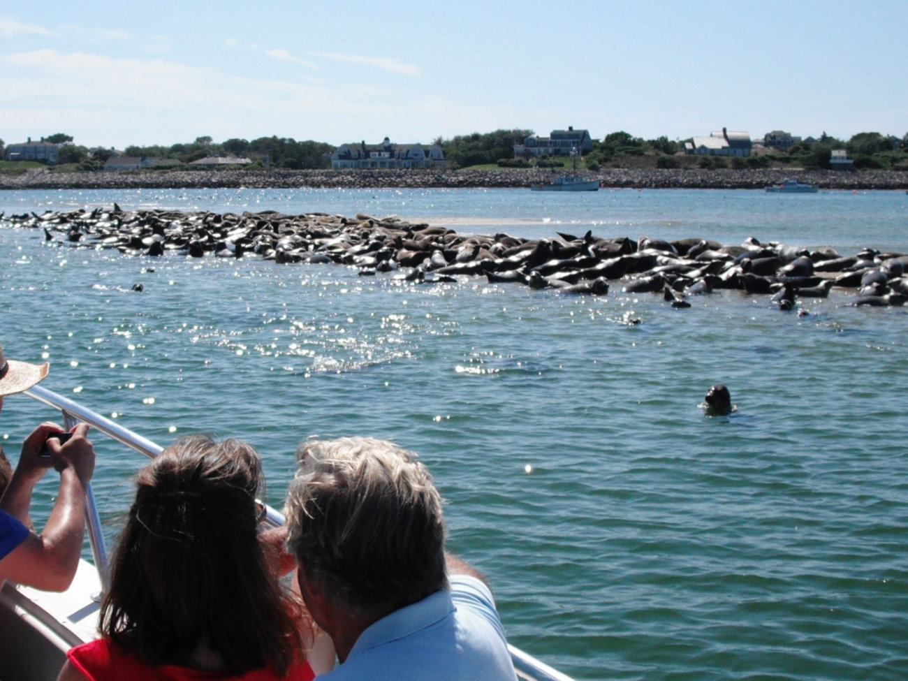 Blue Claw Boat Tours in Cape Cod