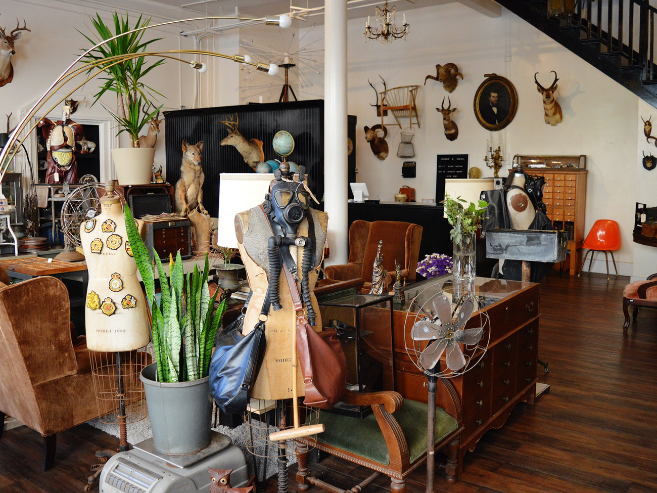 Hound and Quail Store in Oahu