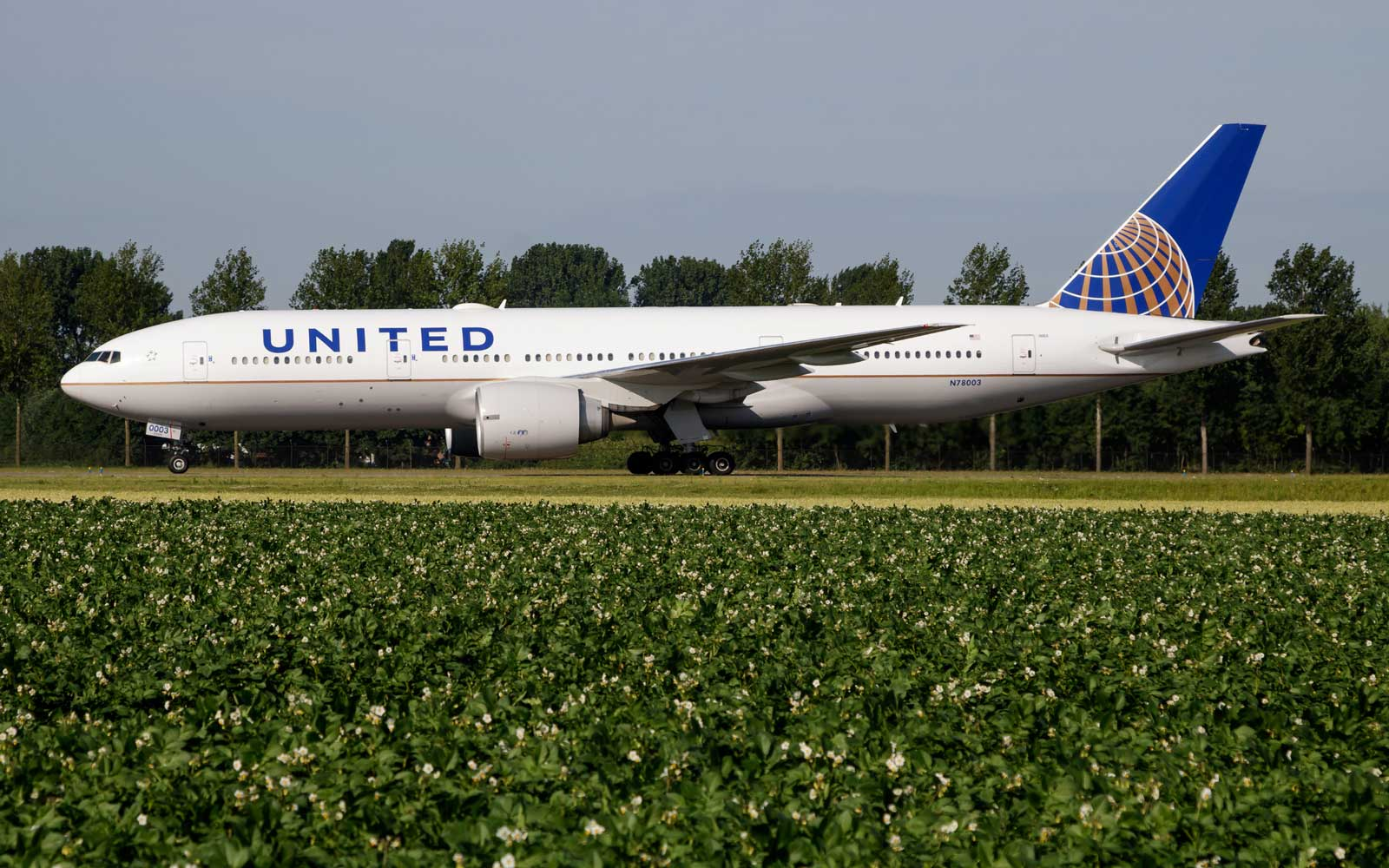 New United Airlines Routes