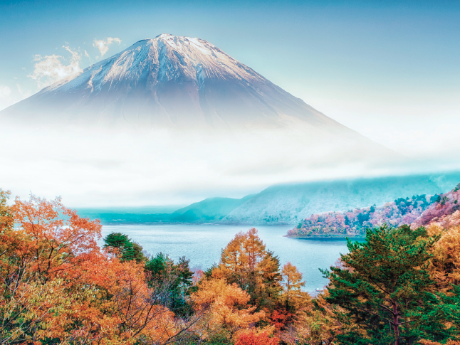 CHECK-IN-MOUNT-FUJI