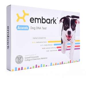 best-pet-gifts-dna-test