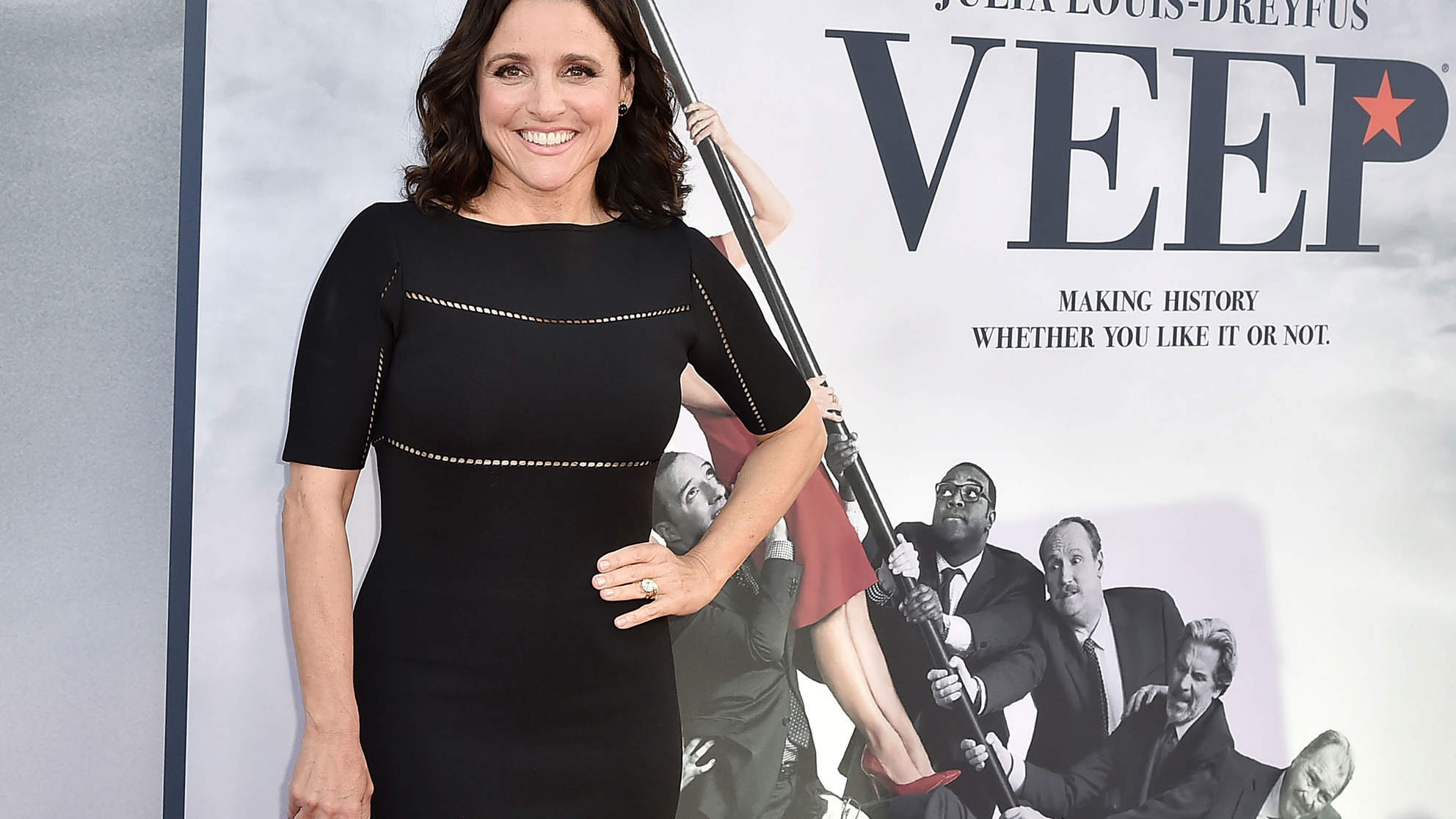 Julia Louis-Dreyfus Announces She's Battling Breast Cancer