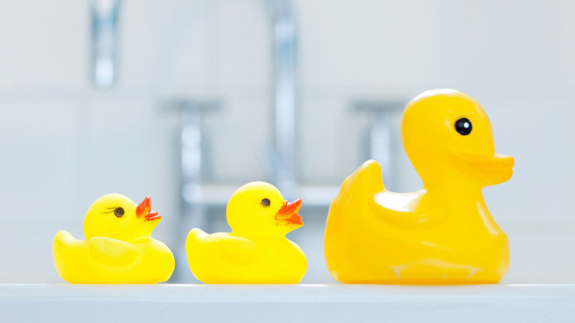 What You Should Know About Mold and Children's Toys