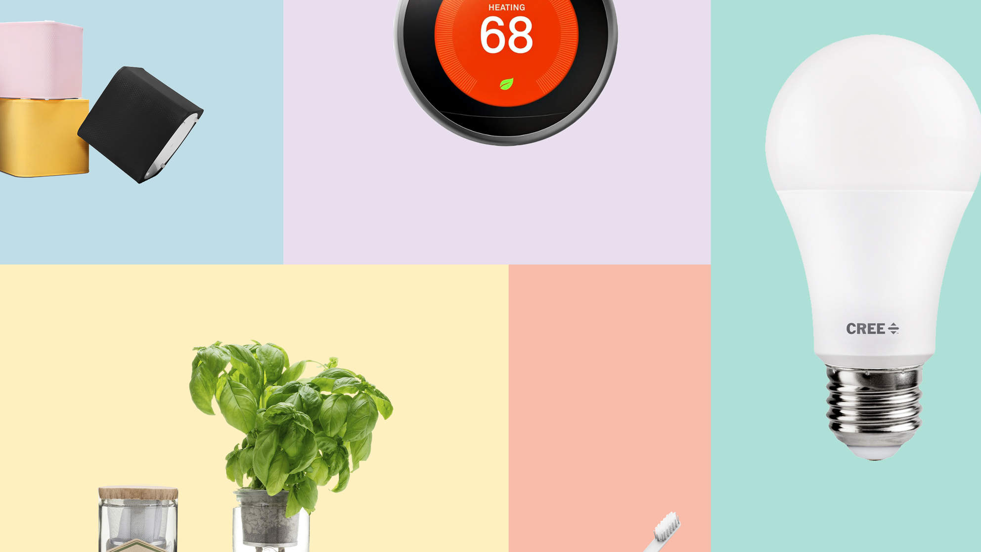 healthy-home-tout