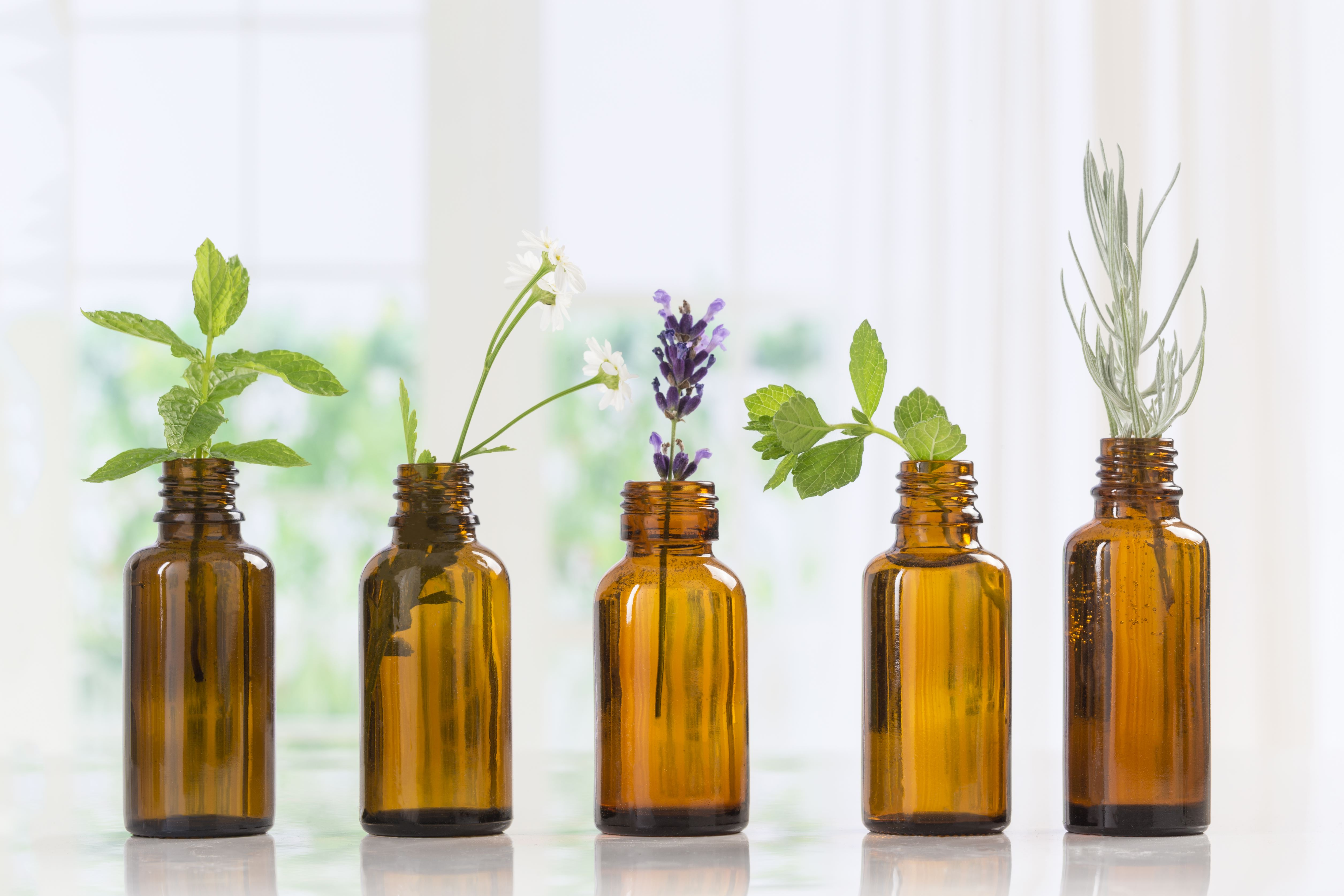 Fascination About Rosemary Essential Oil
