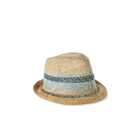 Blue Striped Fedora