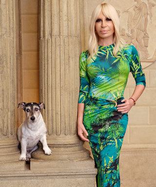 Donatella Versace Dog