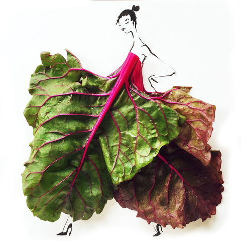 Nutritious Fashion - Embed 1