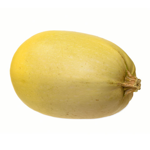 Yellow Spaghetti Squash Isolated on White