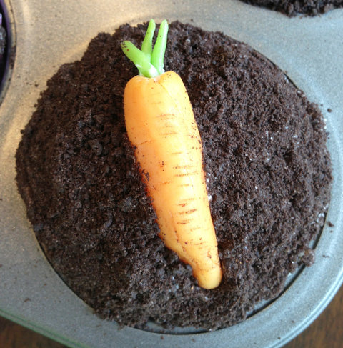 Earth Day Cupcakes - Embed