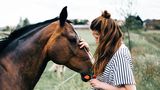 I Use Horse Shampoo, and I'm Convinced That's Why My Hair Is So Long and Thick