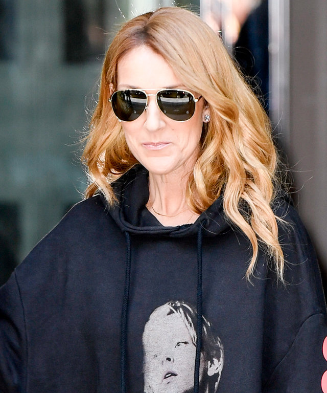 Celine Dion  is wearing a large sweaters with Di Caprio and Kate Winslet pictures in effigy of Titanic movie