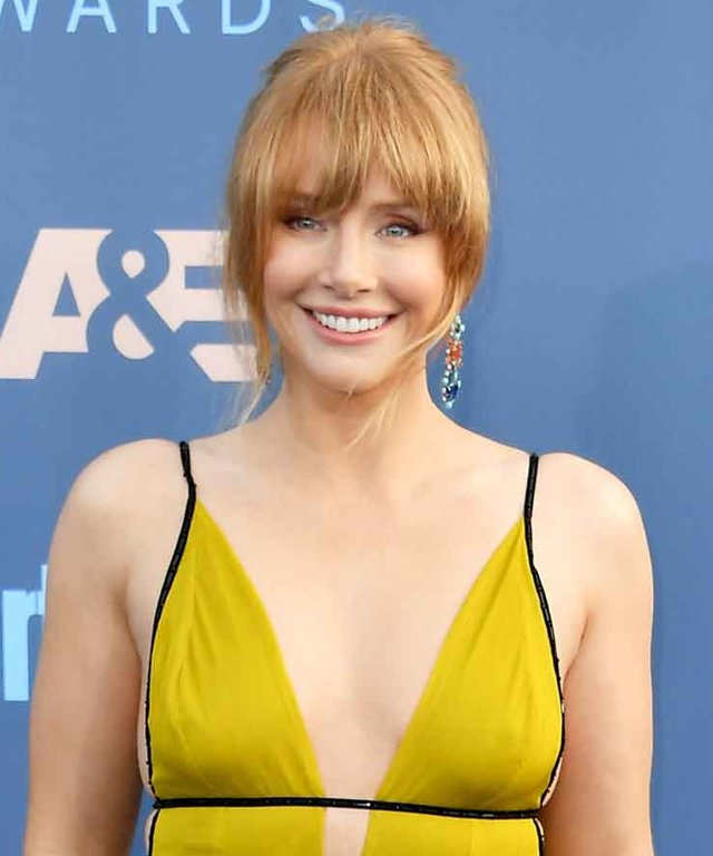 SANTA MONICA, CA - DECEMBER 11:  Actress Bryce Dallas Howard attends The 22nd Annual Critics' Choice Awards at Barker Hangar on December 11, 2016 in Santa Monica, California.  (Photo by Steve Granitz/WireImage)