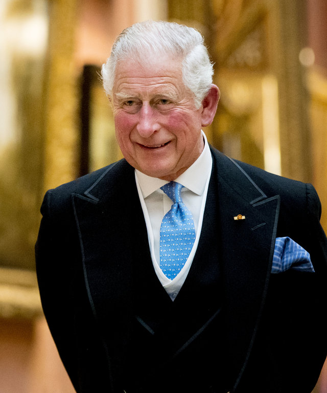 Prince Charles State Visit Of The King And Queen Of The Netherlands - Day One