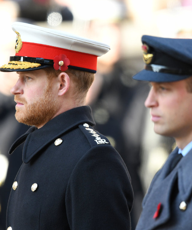 Prince Harry and Prince William Remembrance Sunday Cenotaph Service