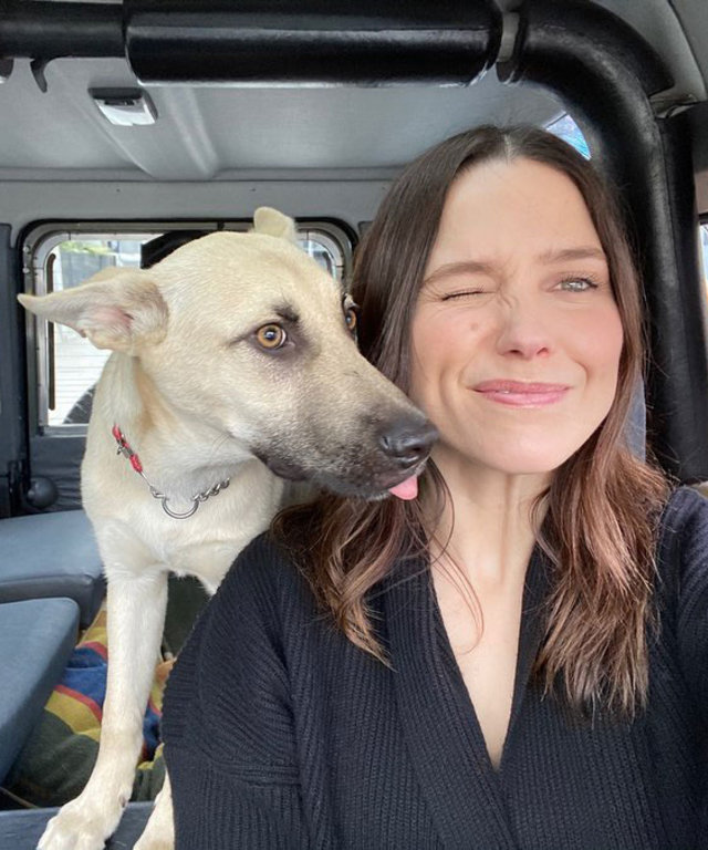 Sophia Bush Dogs