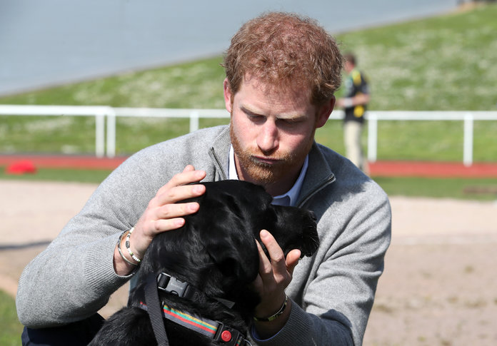 Prince Harry - Embed