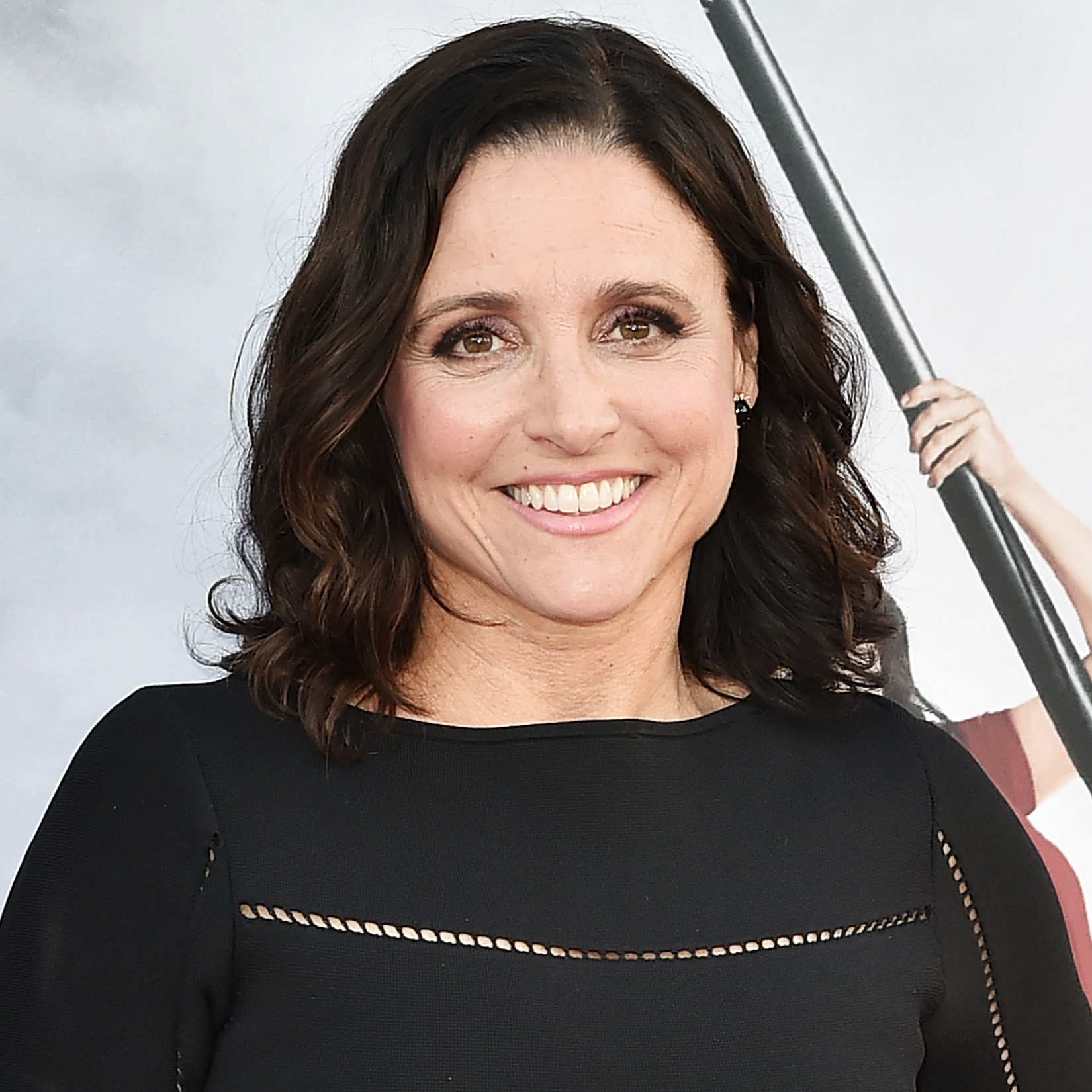 Celebs Who Revealed Health Issues in 2017 - Julia Louis-Dreyfus