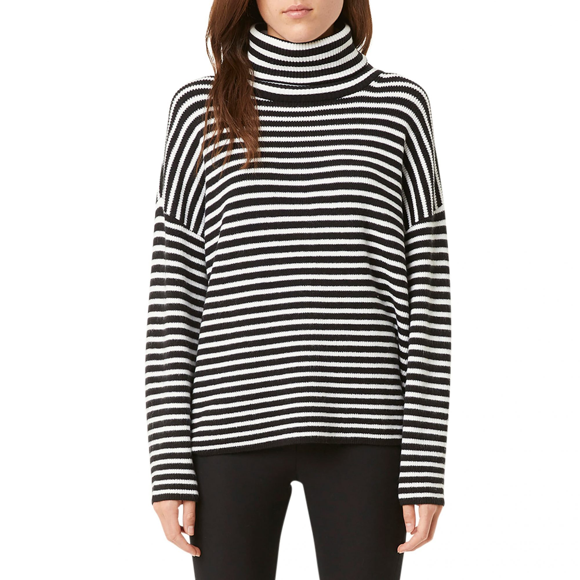 French Connection Stripe Micro Ribbed Turtleneck Sweater