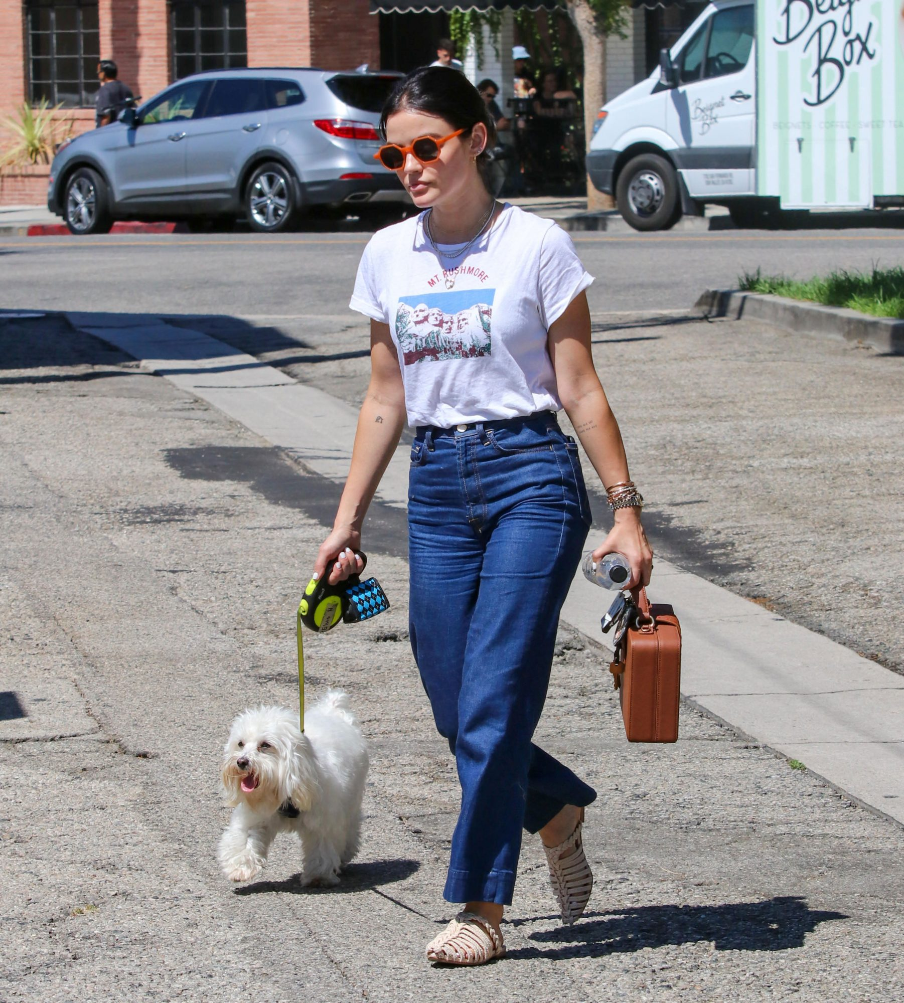 Celebrity Dog Walking Style