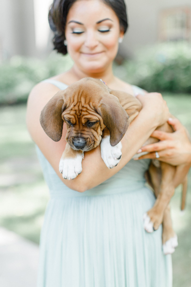 Bridesmaid Puppies 1
