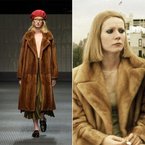gucci wes anderson