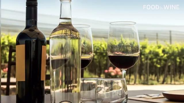 Drink These 10 Bottles and Become a Wine Master