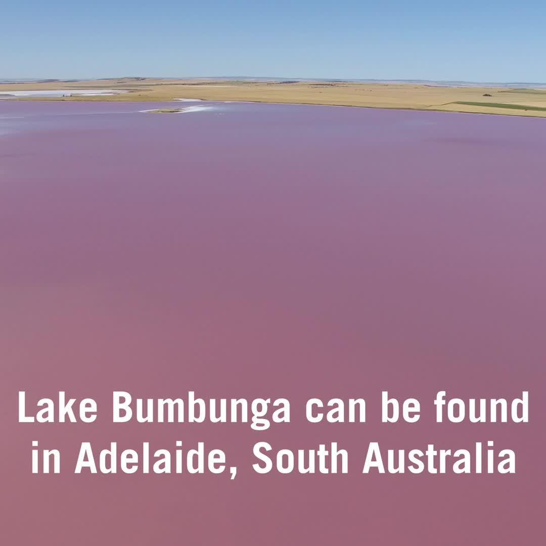 These Bubble-gum Pink Lakes in Australia Are One of Nature's Most Unusual Wonders