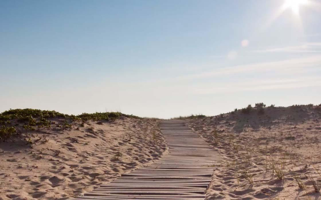 VIDEO: Five Things to Do on Martha's Vineyard