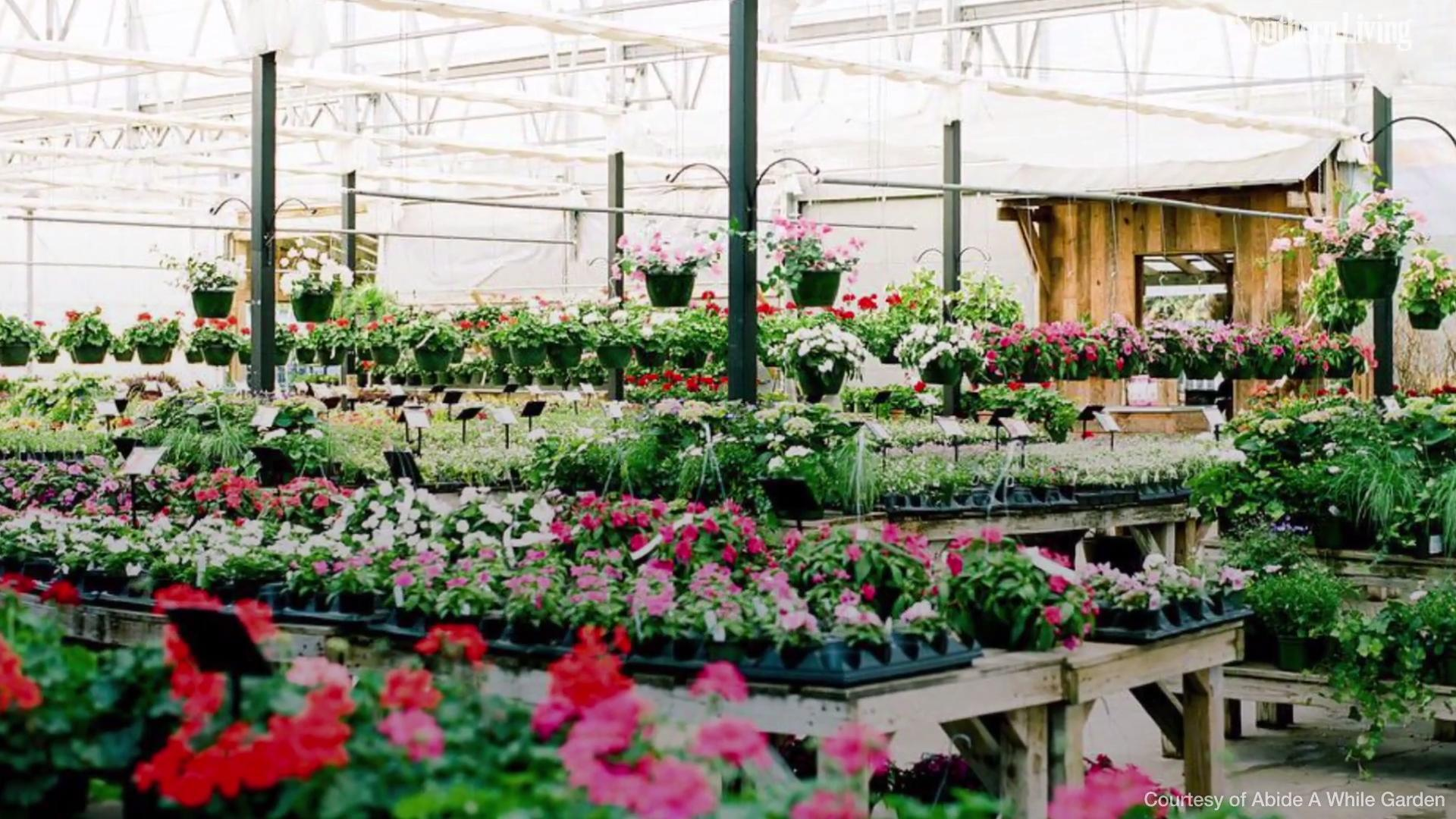 The South's Best Garden Stores