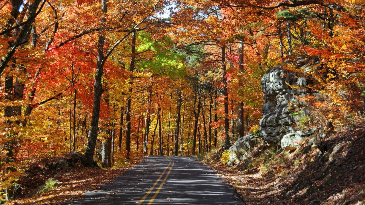 Check Out The South's Best Scenic Drives