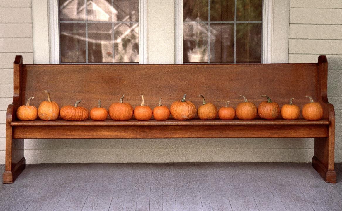 33 Creative Pumpkin Decorating Ideas For Your Front Porch