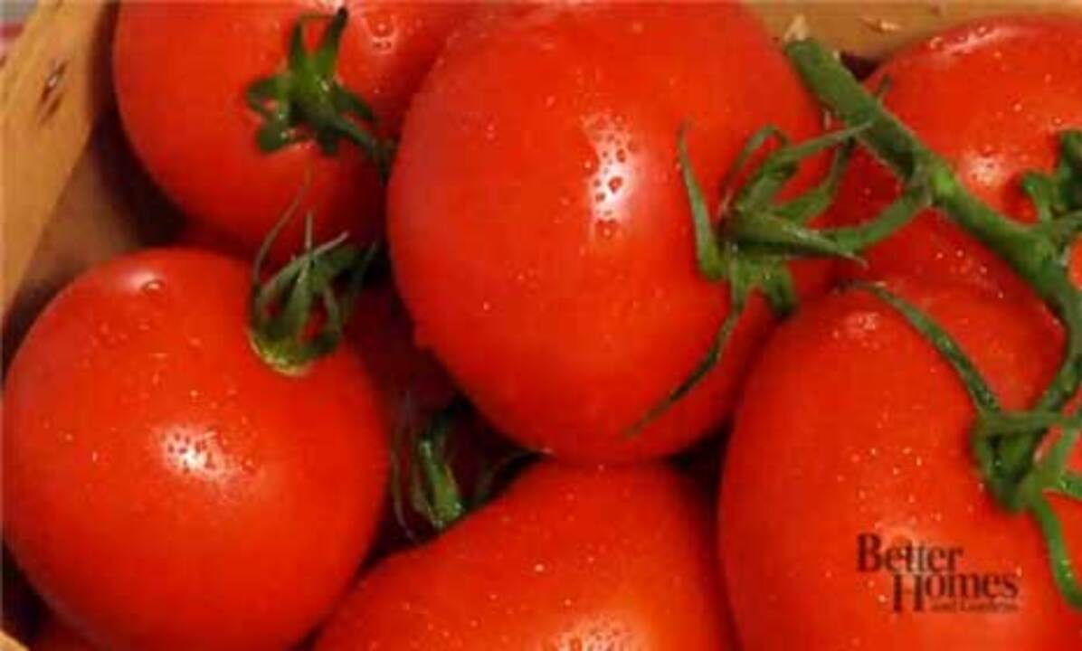 Choose Perfect Tomatoes