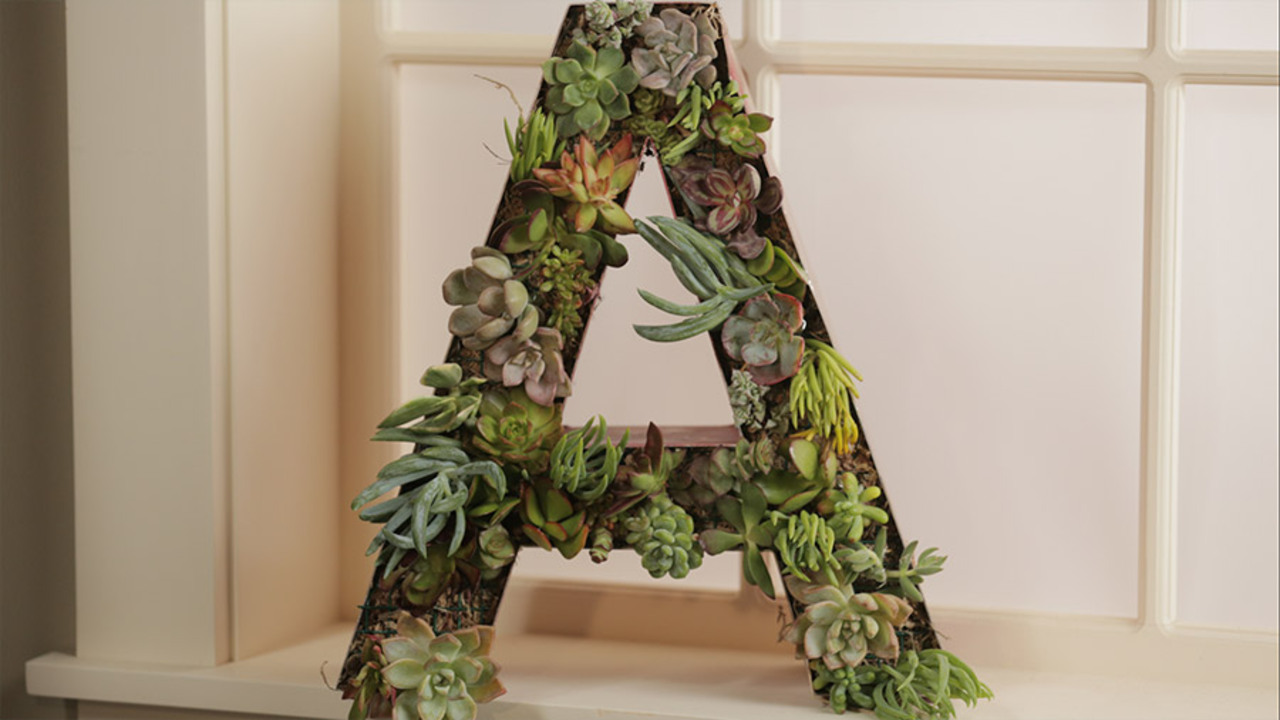 Personalized Succulent Wreath